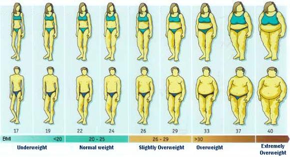 BMI og Kostvejledning